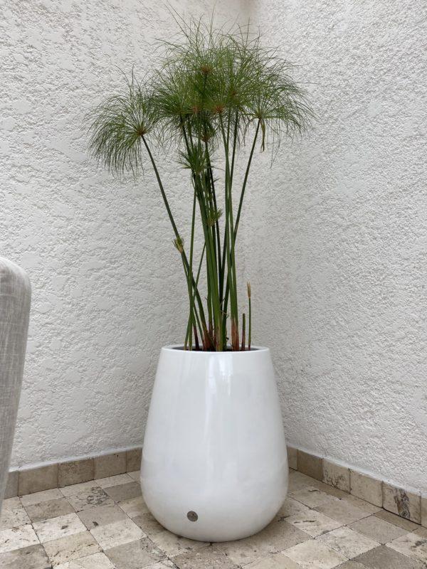 maceta fibra blanca